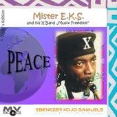 Peace by Ebenezer Kojo Samuels
