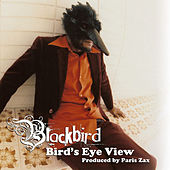 Play & Download Bird's Eye View by Blackbird | Napster