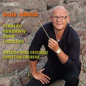 Brain Rubbish by Swedish Wind Ensemble