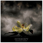 Play & Download Magnolia Road by Intercept | Napster