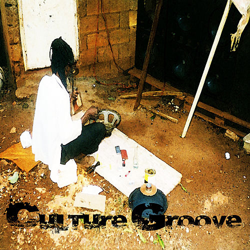 Culture Groove Vol 1 Platinum Edition by Various Artists