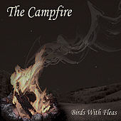 Play & Download The Campfire by The Birds | Napster