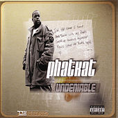 Play & Download The Undeniable LP by Phat Kat | Napster