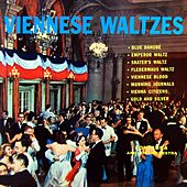Play & Download Viennes Waltzes by Fontana | Napster