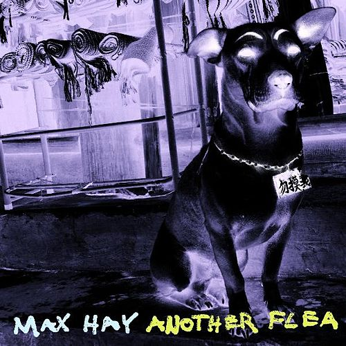 Another Flea by Max Hay