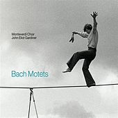 Play & Download Bach: Motets by The Monteverdi Choir | Napster