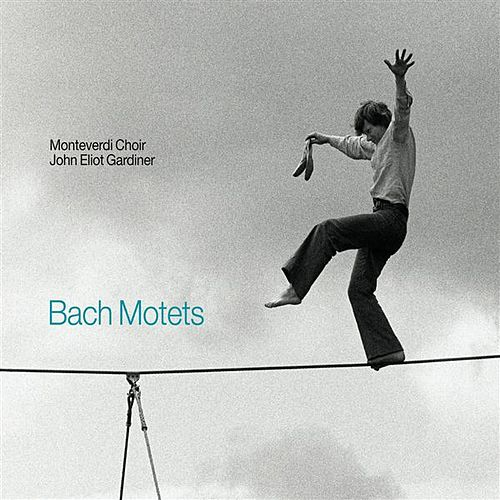 Bach: Motets by The Monteverdi Choir