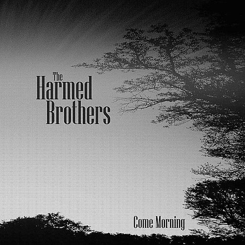 Come Morning by The Harmed Brothers