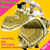 Play & Download Exitos Mexicanos, Vol 1 by Various Artists | Napster