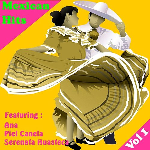 Exitos Mexicanos, Vol 1 by Various Artists