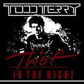 Thief In The Night by Todd Terry