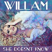 Play & Download She Doesn't Know by Willam | Napster