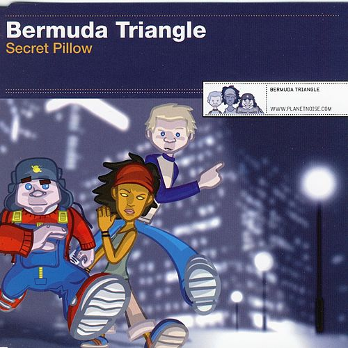 Secret Pillow by Bermuda Triangle