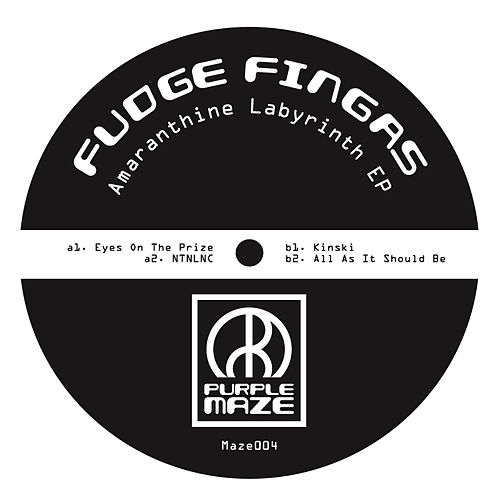 Play & Download Amaranthine Labyrinth EP by Fudge Fingas | Napster