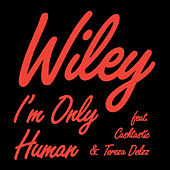 I'm Only Human - Single by Wiley