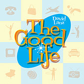 The Good Life by David Lanz