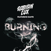 Burning by Adrian Lux