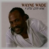 Play & Download A LIttle Good News - Single by Wayne Wade | Napster