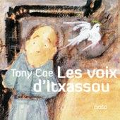 Les voix d'Itxassou by Tony Coe