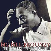 Play & Download The Southern Blues by Big Bill Broonzy | Napster