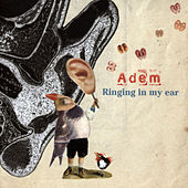 Ringing In My Ear by Adem