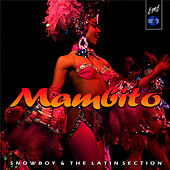 Play & Download Mambito by Snowboy | Napster
