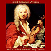 Vivaldi: the Four Seasons - String Concerto by Vivaldi Collegium Orchestra