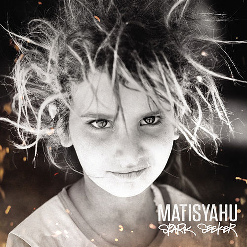 Spark Seeker by Matisyahu