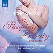 Play & Download Tchaikovsky: Sleeping Beauty (Highlights) by Kosice Slovak State Philharmonic Orchestra | Napster