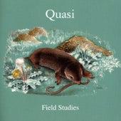 Field Studies von Quasi