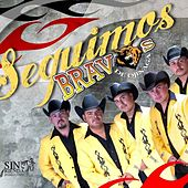 Play & Download Seguimos Bravos by Bravos De Ojinaga | Napster