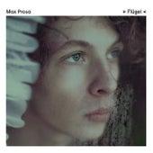 Flügel by Max Prosa