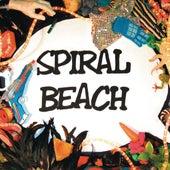 Ball by Spiral Beach