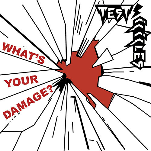What's Your Damage? by Test Icicles