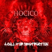 A Call For Destruction by Hocico