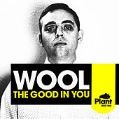 The Good in You EP by Wool