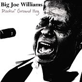 Play & Download Rootin' Ground Hog by Big Joe Williams | Napster
