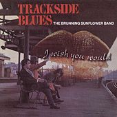 I Wish You Would (Trackside blues) by Brunning Sunflower Blues Band