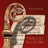 Play & Download PSALLAT ECCLESIA – sequences from medieval Norway by Schola Solensis | Napster