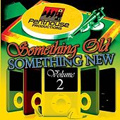 Play & Download Something Old, Something New Vol. 2 by Various Artists | Napster
