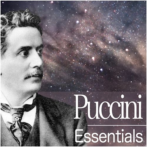 Play & Download Puccini Essentials by Various Artists | Napster