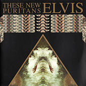 Play & Download Elvis by These New Puritans | Napster