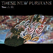Hologram by These New Puritans