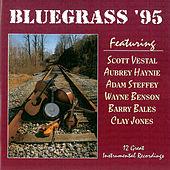Play & Download Bluegrass 95 by Adam Steffey | Napster