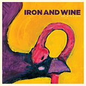 Boy With A Coin von Iron & Wine