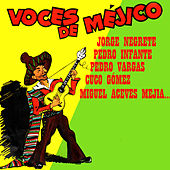 Play & Download Voces de Méjico by Various Artists | Napster