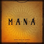 Play & Download Hasta Que Te Conocí by Maná | Napster