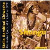 Play & Download Shungu by Stella Chiweshe | Napster