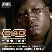 Function (Remix) [feat. Problem; Young Jeezy; Chris Brown; French Montana; Red Café] by E-40
