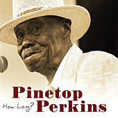 Play & Download How Long by Pinetop Perkins | Napster